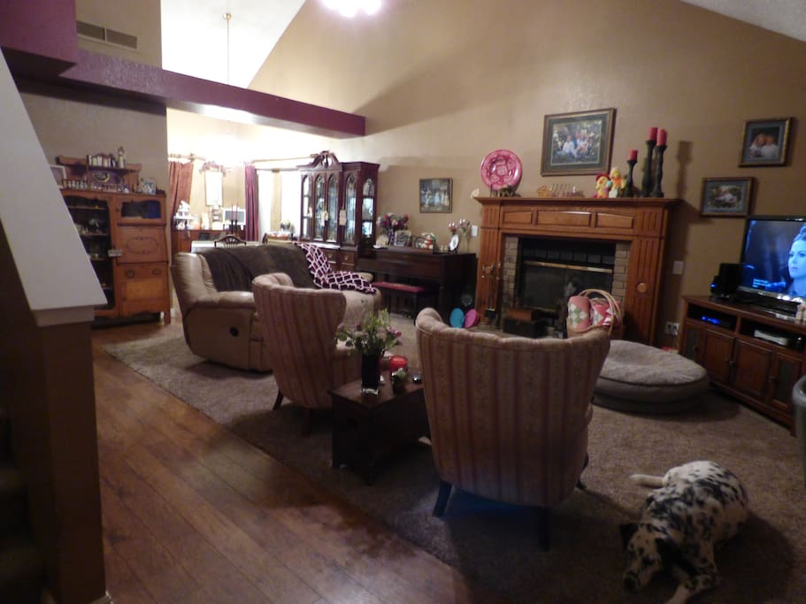 Family Room complete with our Dalmatian.