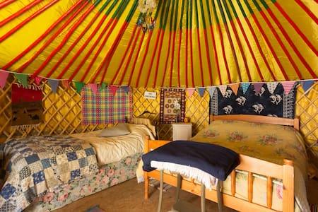 4 Person Traditional Mongolian Yurt - Tuam - Yurt
