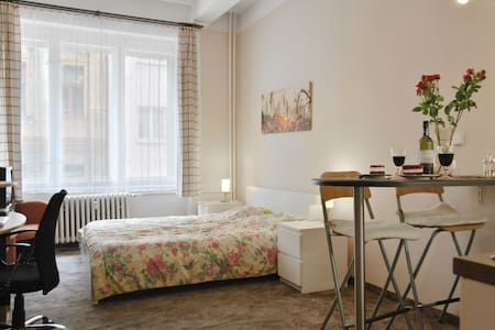 Apt. 2 min from Wenceslav Square - 아파트