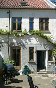 Big apartment in center of Odense. - Odense - Apartment