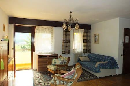 ampio appartamento soleggiato - Merano - Appartement