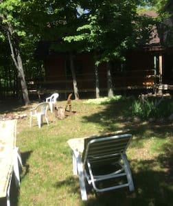 Family Fun Log Cottage - Mindemoya - Cabin