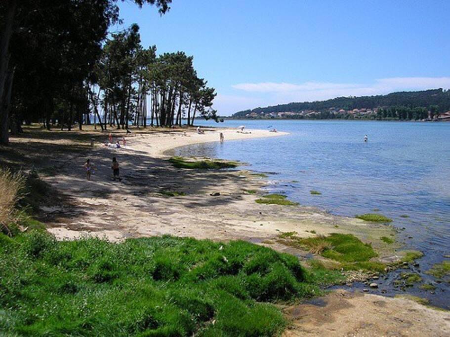 Te informamos sobre las decenas de playas cercanas ¡¡