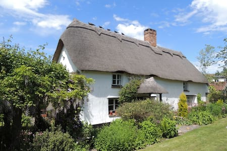 Peaceful Cottage near Glastonbury - Rumah