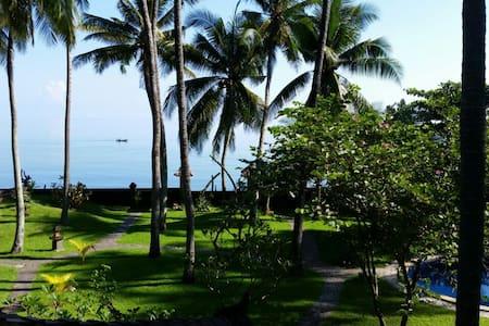 Hideaway: coconut grove by the sea - Buleleng Regency - House