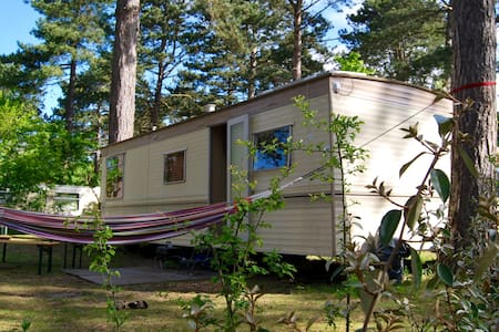 Pleasant mobile home in the dunes - Cabane