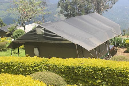 African Safari Tent on Valley View - Munnar - Tent