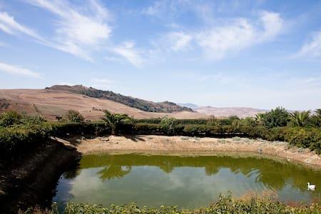 Al Lago Verde Stanza Fichi D'india - Alia - Villa