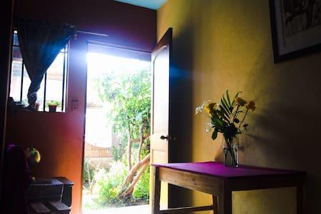 Welcome to Casa de los Nahuales! - Bed & Breakfast