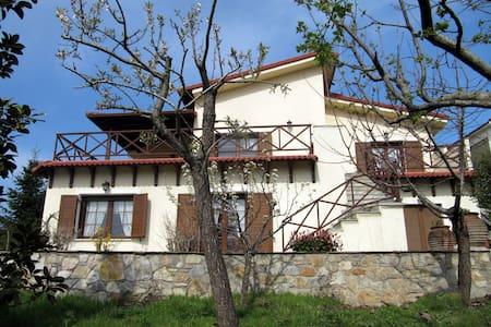 Koniskos Traditional Villa - Koniskos