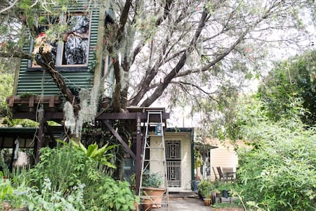 Single Study, Magic Habitat - Tighes Hill