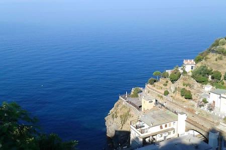 Terrazza vista mare - Riomaggiore