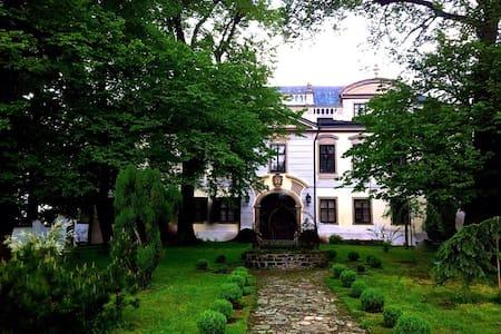 Zamek between Prague and Kutna Hora - Istana