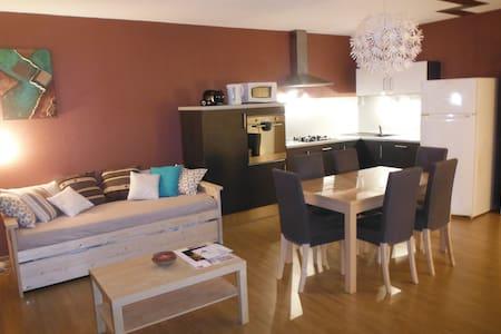 Appartement rénové*** 52m2 + wifi - Chamrousse