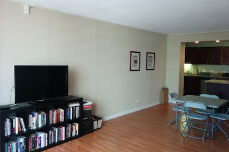 Immaculate 1 Bed 1 Bath dowtown CHI