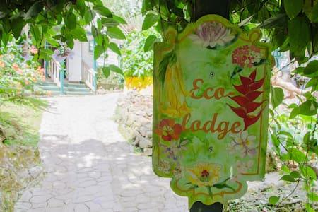 Organic Farm in the Rainforest - Windward Side - Cottage
