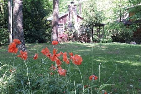Creekside Cabin On River Walk Nat'l Forest Trails - House