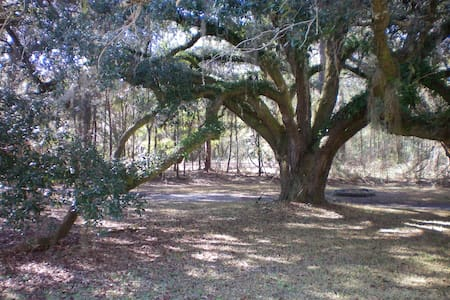 CAMPING: By Suwannee Music Park & River-Elec/water - Camper/Roulotte