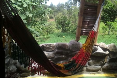 Coffee plantation with amazing view - Bed & Breakfast