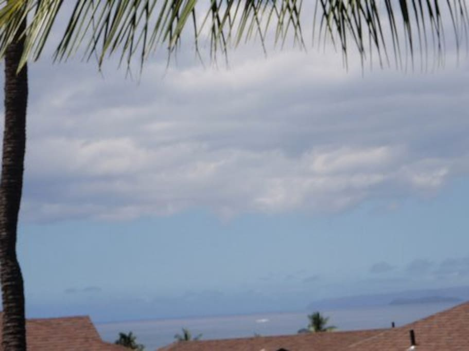 View up the coast from the lanai.