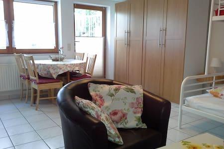 Waldshut - 1, 5 room apartment - Apartment