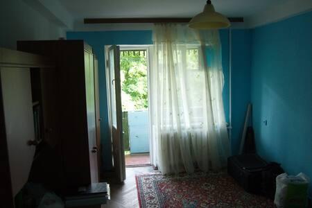 Cosy room near park and metro, Kiev