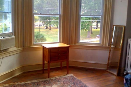 Lovely room with a view - U Penn area - Hus