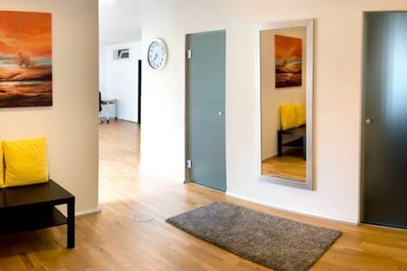 modernes, grosses Loft (urban) - Feusisberg - Loft
