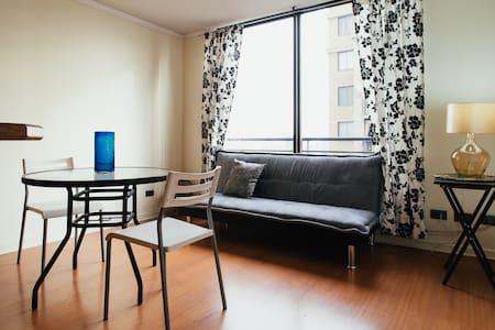 Perfect Spot  Bellas Artes-Downtown - Santiago - Appartamento