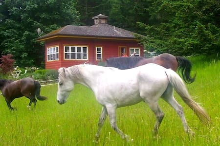 The Rose Cottage - Talking Horse Farm on Orcas - Eastsound - Chalet
