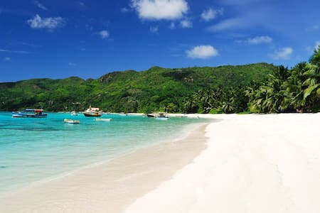 Chalets-near spectacular  beaches - Anse Royale  - Apartment