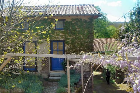 Detached Tranquil French Farmhouse - Lieurac