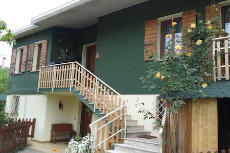 The Green House  near Venice  ITALY - PREGANZIOL