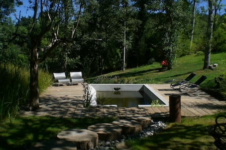 Chaton, un petit coin de paradis - Mézos