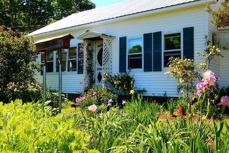 Breeze Hill Cottage - Hartland