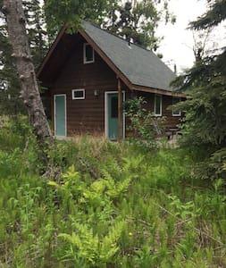 Northwoods Cabin - Hytte