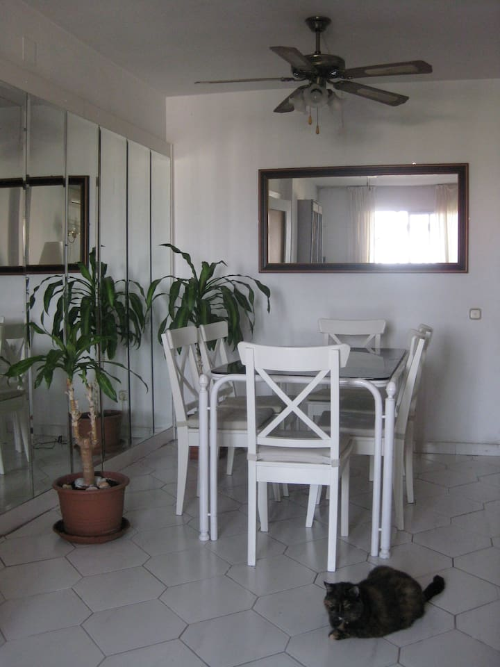 Dining area in lounge