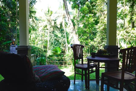 Beautiful jungle cottage, near Ubud