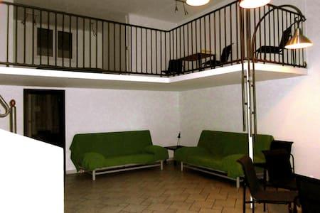 Loft spazioso con accesso diretto - Turin - Loft