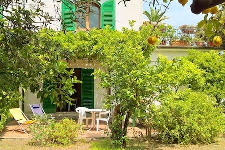 Gardenhouse on the beach app.n° 3 - Taormina