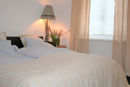 1st top guestroom 10min from Basel - House