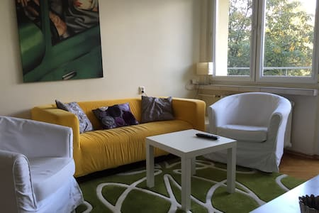 Spacious apartment in the center of the city - Katowice - Apartment