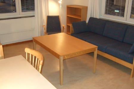 2 room + kitchen near to Uppsala centre - Uppsala