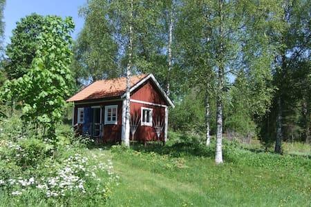 Liten stuga i vacker natur - Cabin
