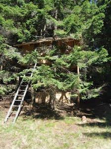 Hacienda ve větvích Portášky - Dům na stromě