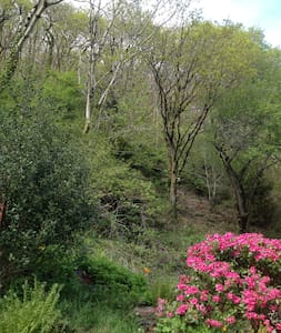 Quiet & Peaceful with Valley Views - Aberystwyth - House