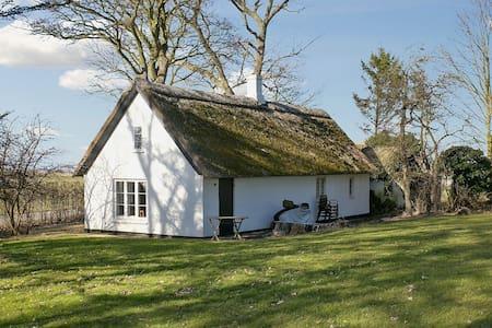 Cozy Charming Budget House on Møn - Stege - House