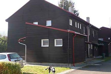 Apartmán v horské chatě k pronájmu - Jáchymov - Wohnung