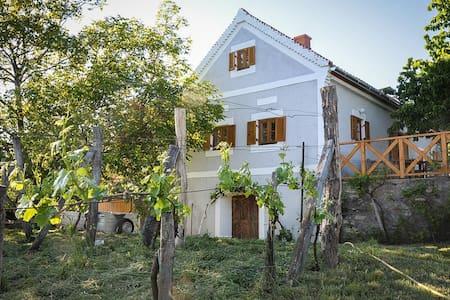 Ház a Szent György-hegyen