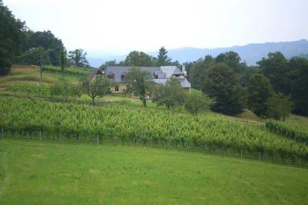 Maison du Causit Aubertin - Huis